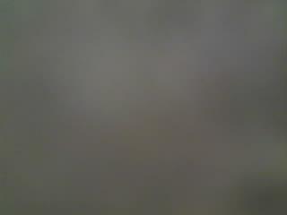 Radiobus 2